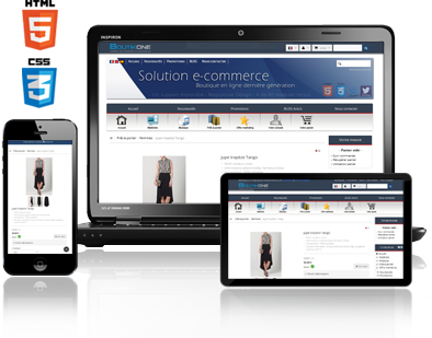 solution ecommerce responsive